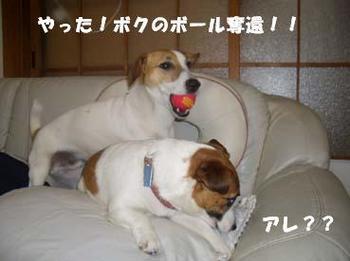うにの反撃④.jpg