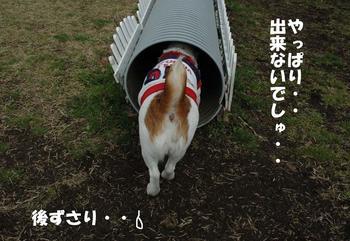 トンネル探検⑨.jpg