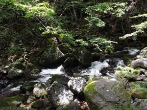 乙女の滝⑭.jpg