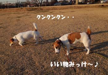 広場散歩①.jpg