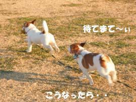 広場散歩⑧.jpg