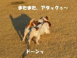 広場散歩⑬.jpg