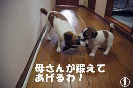 長男とバトル①.jpg