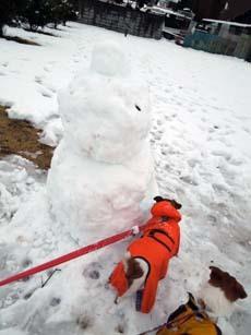 雪散歩26.jpg
