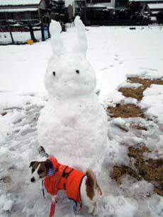 雪散歩27.jpg