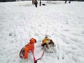 雪散歩⑤.jpg