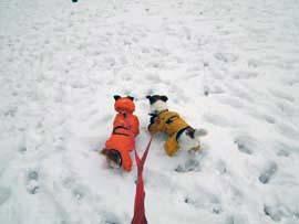 雪散歩⑥.jpg