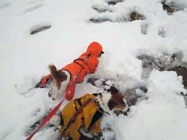 雪散歩⑩.jpg