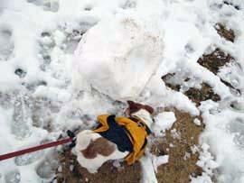 雪散歩⑬.jpg