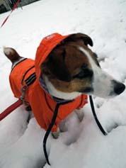 雪散歩⑳.jpg